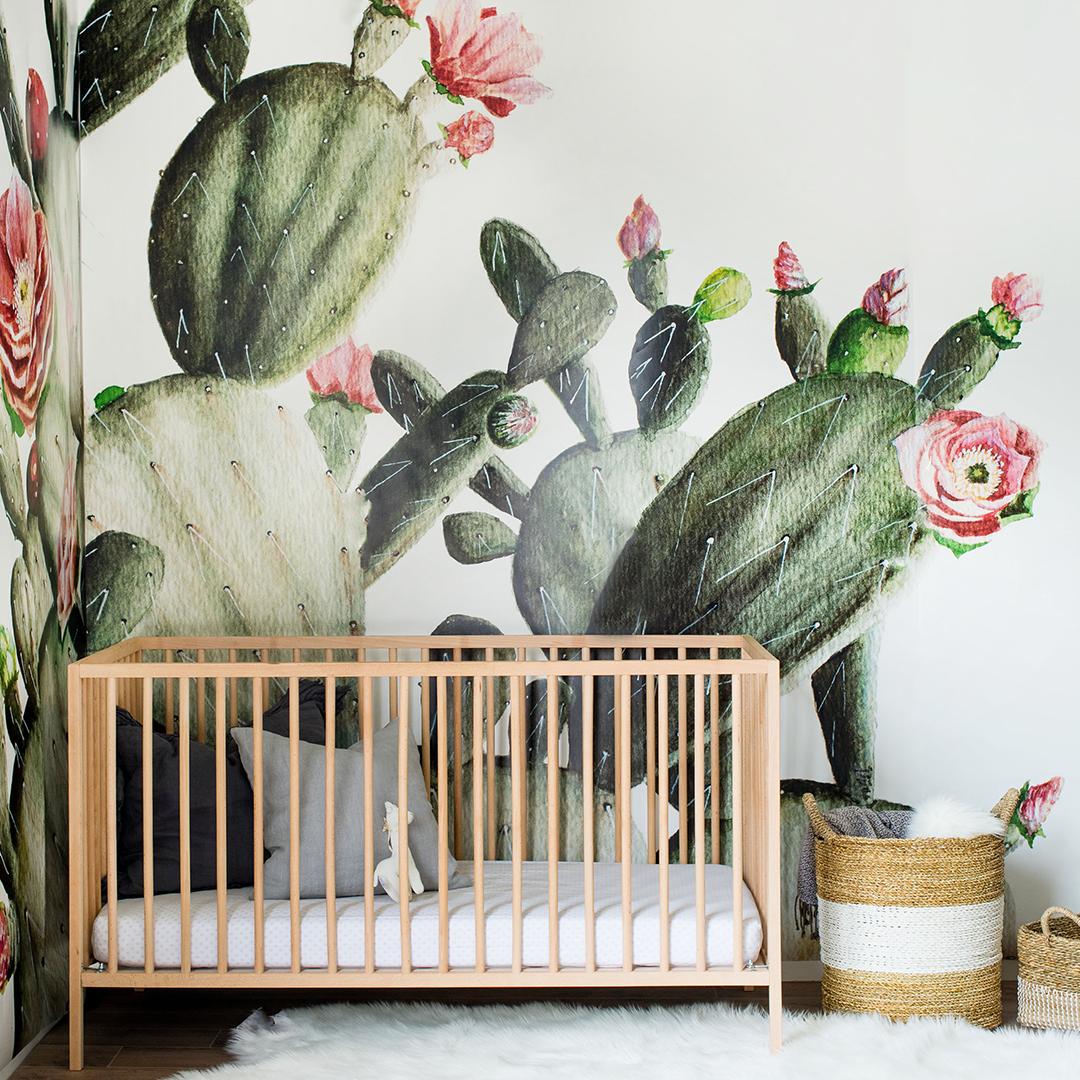 Prickly Pear Cactus Mural