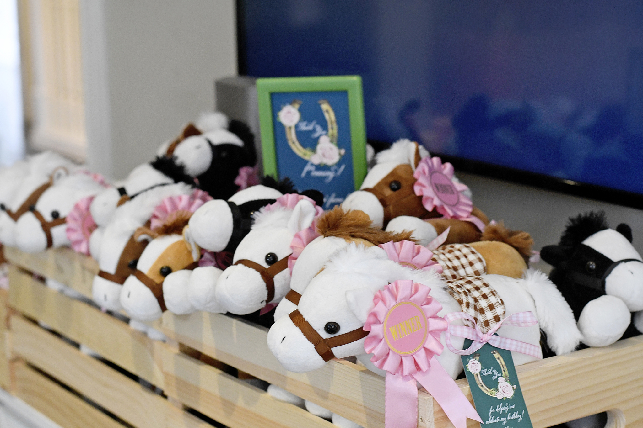 Plush horses served as party favors!